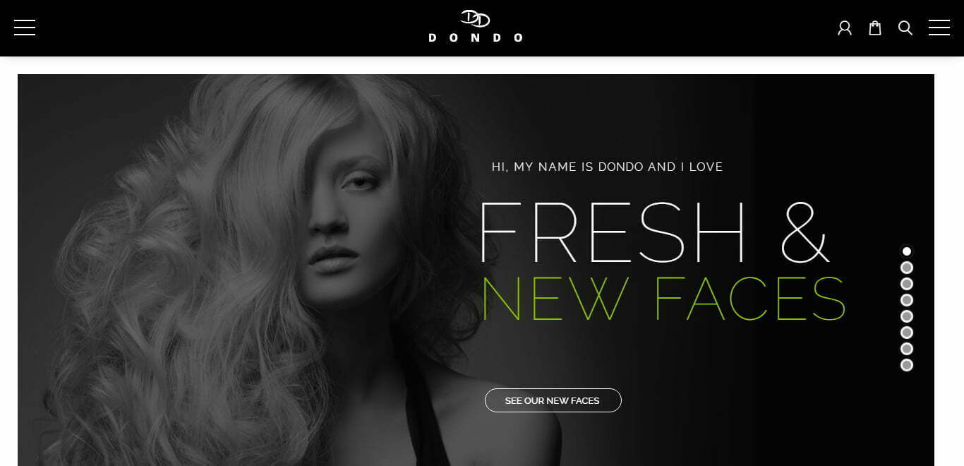 dondo wordpress theme